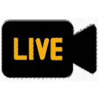 Livestream - 1 Camera
